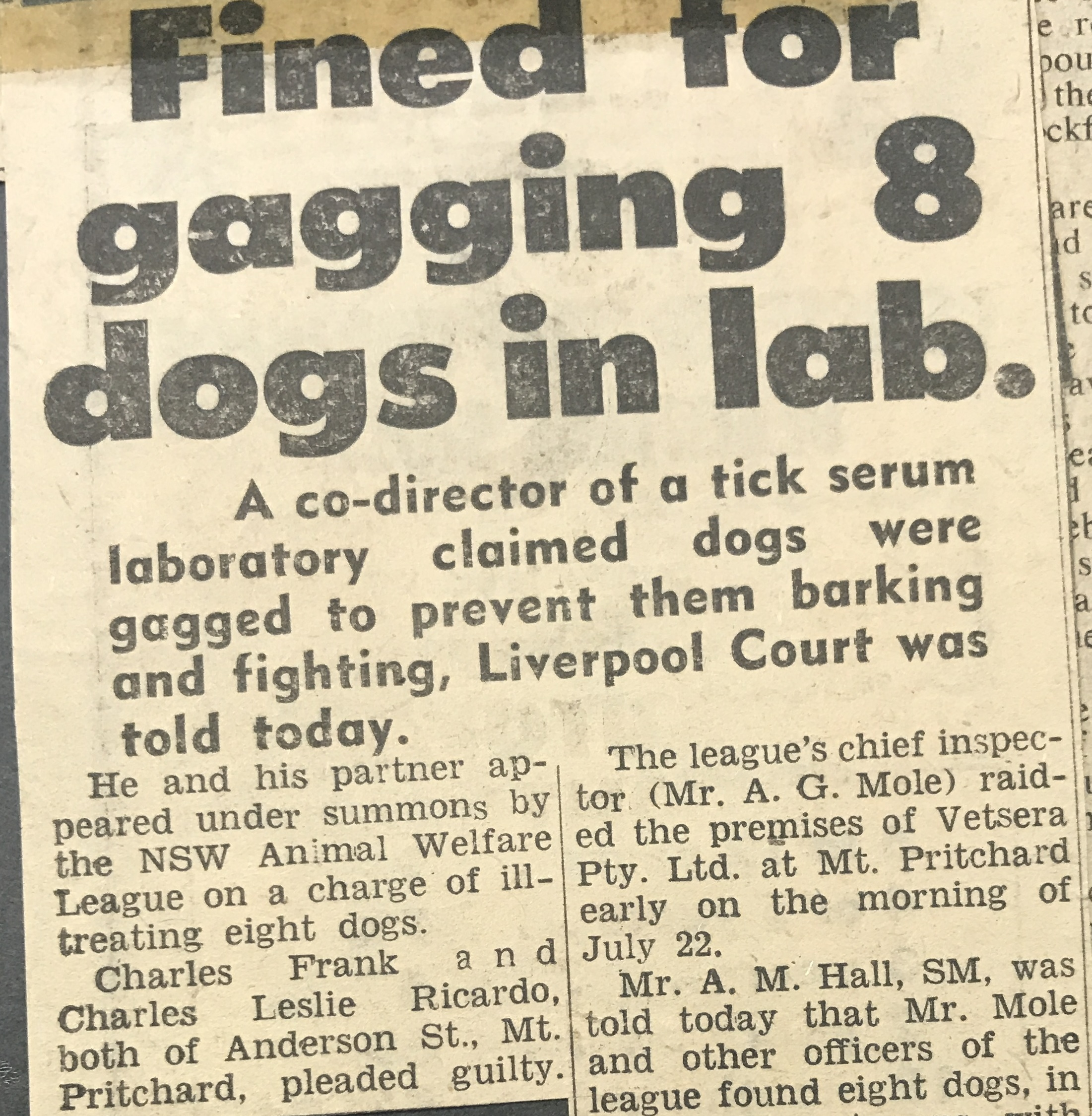 Fined for gagging 8 dogs in lab