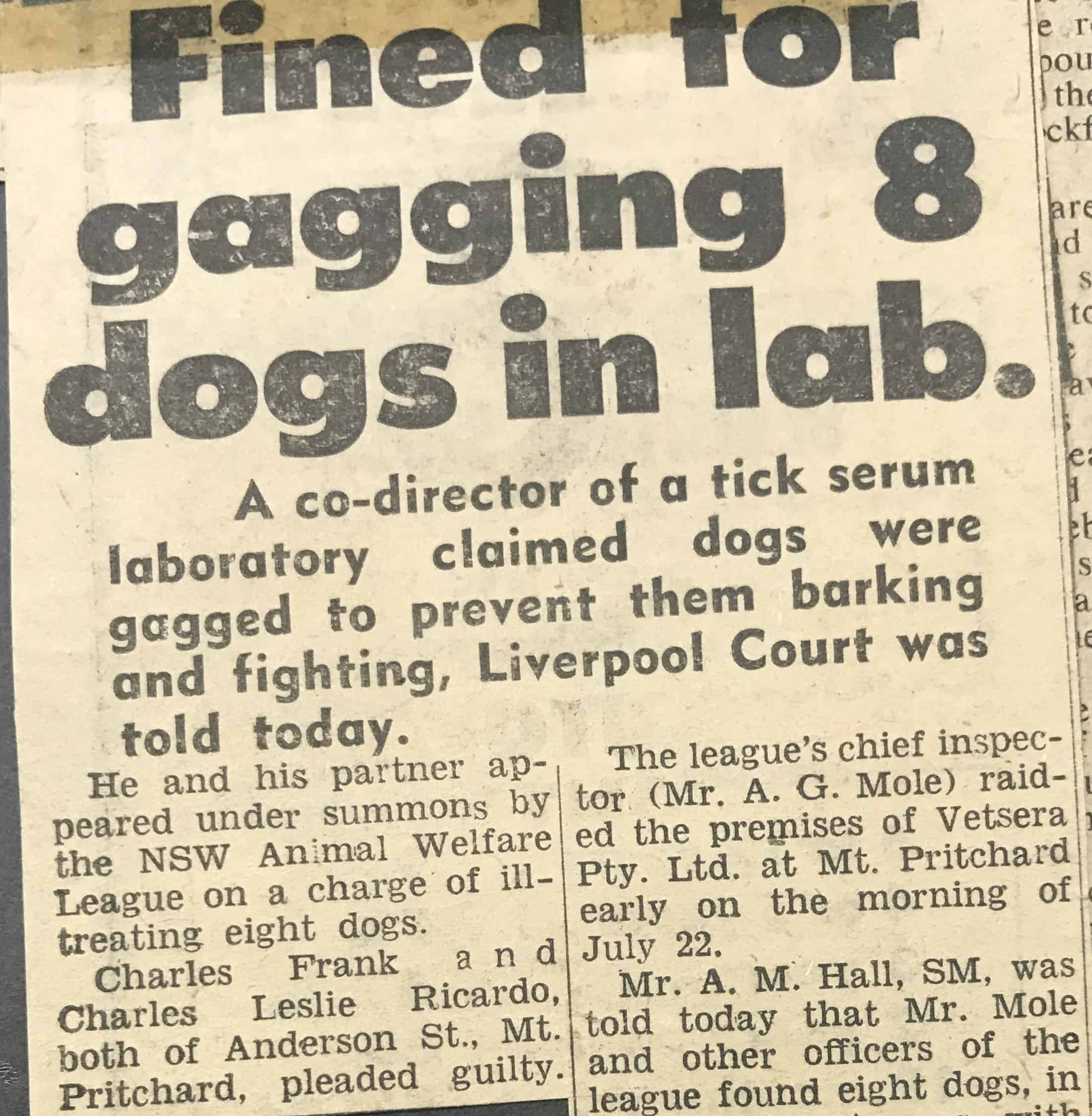 News article on a prosecution of a laboratory who gagged dogs