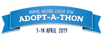 animal welfare league nsw adoptathon banner