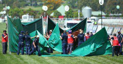 Assembling green screens at racecourse