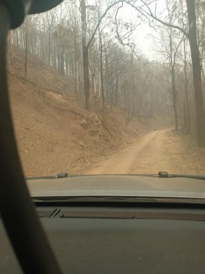 Road going to a Bush Fire