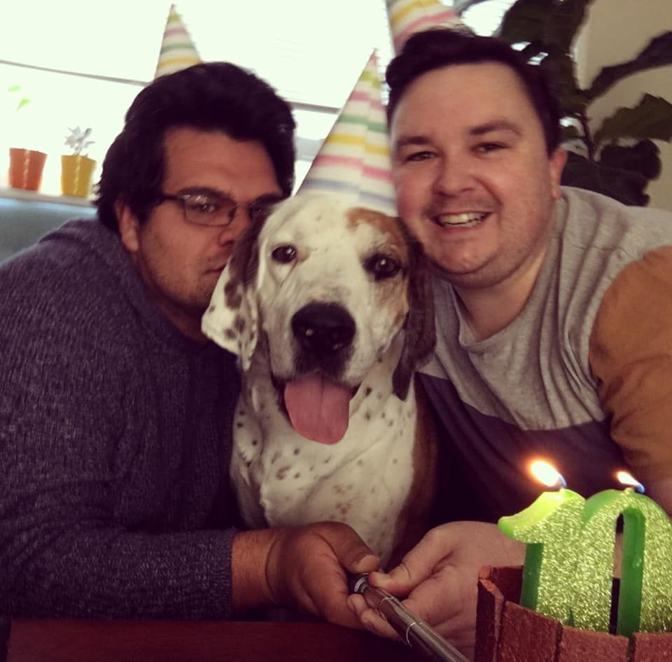 dog wearing a party hat with two men