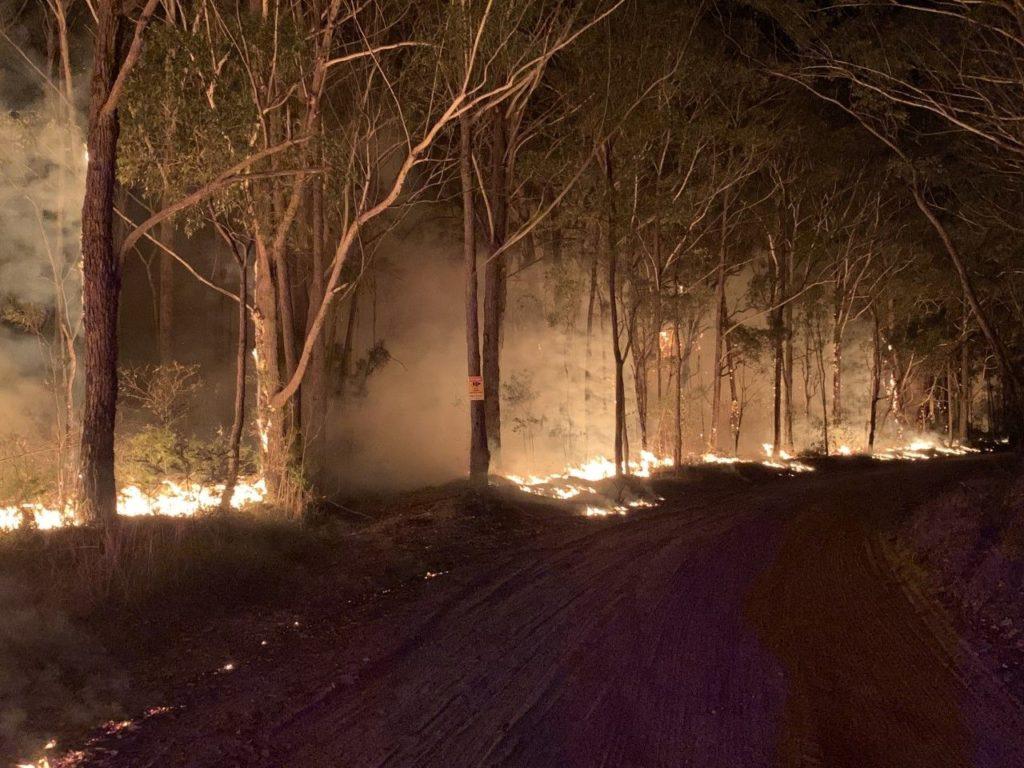 bush fires at night on roadside
