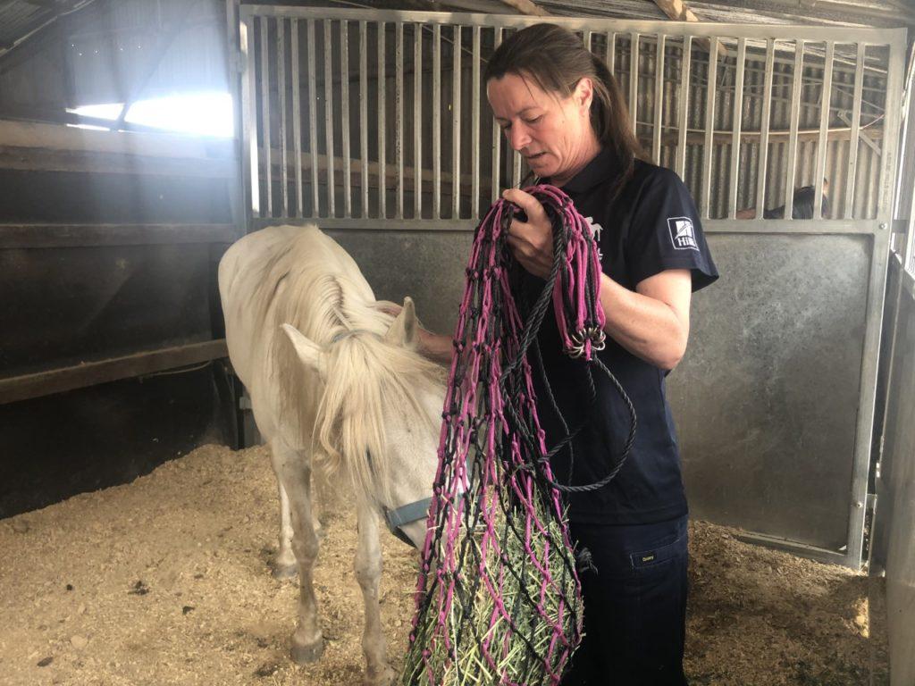 woman feeding pony hay