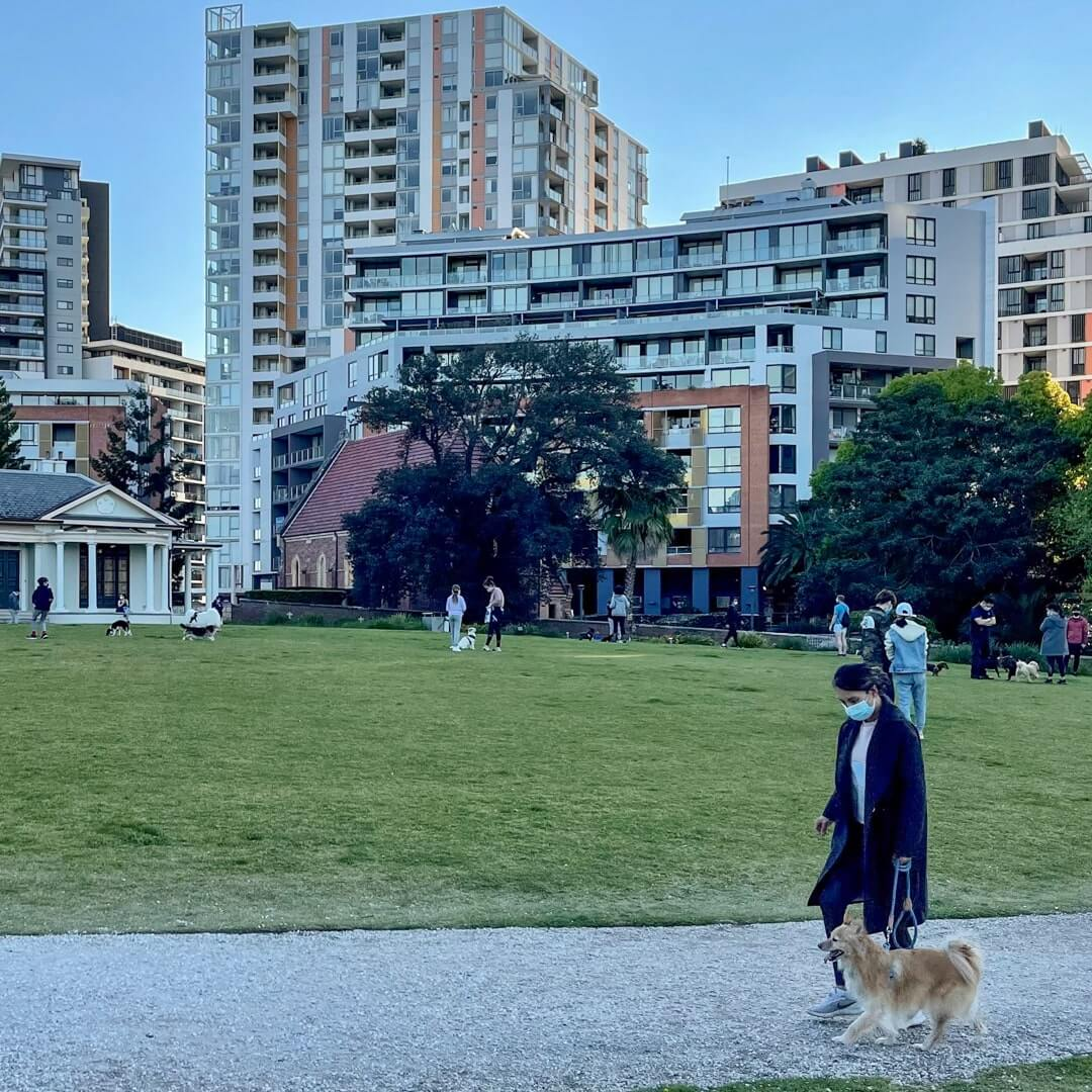 End to blanket bans on pets in strata
